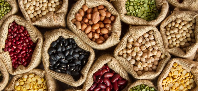 Bank nasion i jego znaczenie