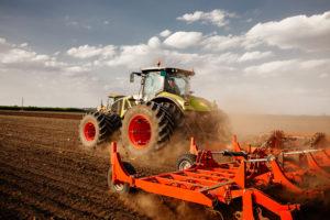 wymagania klimatyczno-glebowe pszenicy
