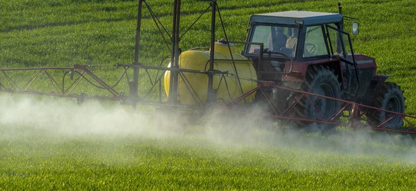 Jesienna regulacja wzrostu zbóż