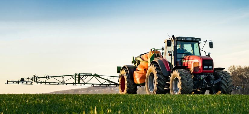 Jesienne odchwaszczanie zbóż