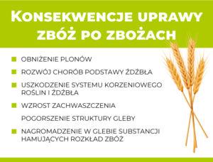 Konsekwencje uprawy zbóż po zbożach