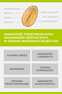 Zawartość składników odżywczych w ziarnie