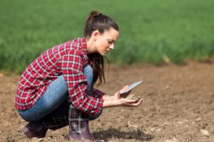 Sprawdzanie jakości gleby przed zmianowaniem roślin uprawnych